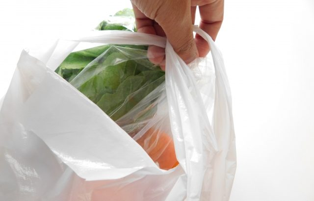 小泉環境大臣、レジ袋はプラスチックゴミの本質ではないことを認める